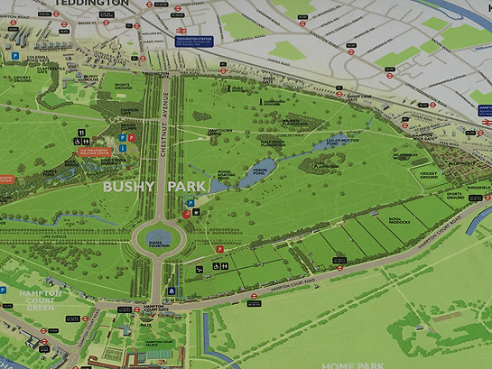 Bushy Park Map Bushy Parkrun | Run To Win